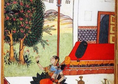 Marco Polo. El libro de la India